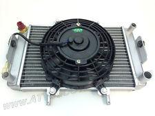 RADIATOR ASSEMBLY FOR JCL BUYANG 300CC ATV, MANCO TALON (SKU#: 300D2504-8853)