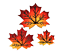 New-wooden-leaf-magnets-handmade-in-the-USA thumbnail 1