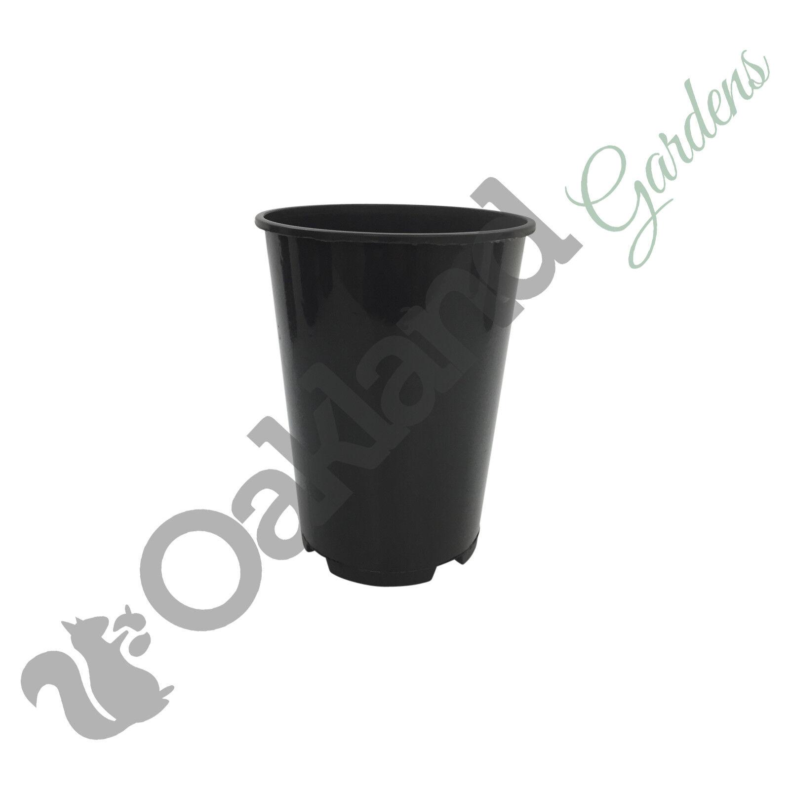 50 x Deep Rose Pots 2 Litre L Lt Plant Flower Pot Tall Plastic Black Strong