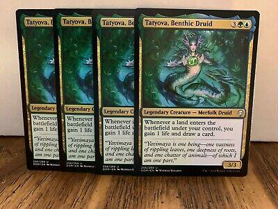Dominaria Green Uncommon Magic Card 4x MTG: Elfhame Druid DOM