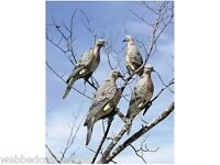 4-pack Metal Clip On Dove Decoys Mourning Doves Edge Lucky Duck Decoy Expedite