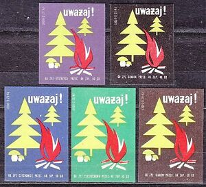POLAND-1968-Matchbox-Label-Cat-Z-891-set-Watch-out-Forest-and-fungi