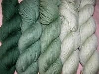Forest Green Family Paternayan Wool 3ply Persian Yarn Needlepoint Crewel