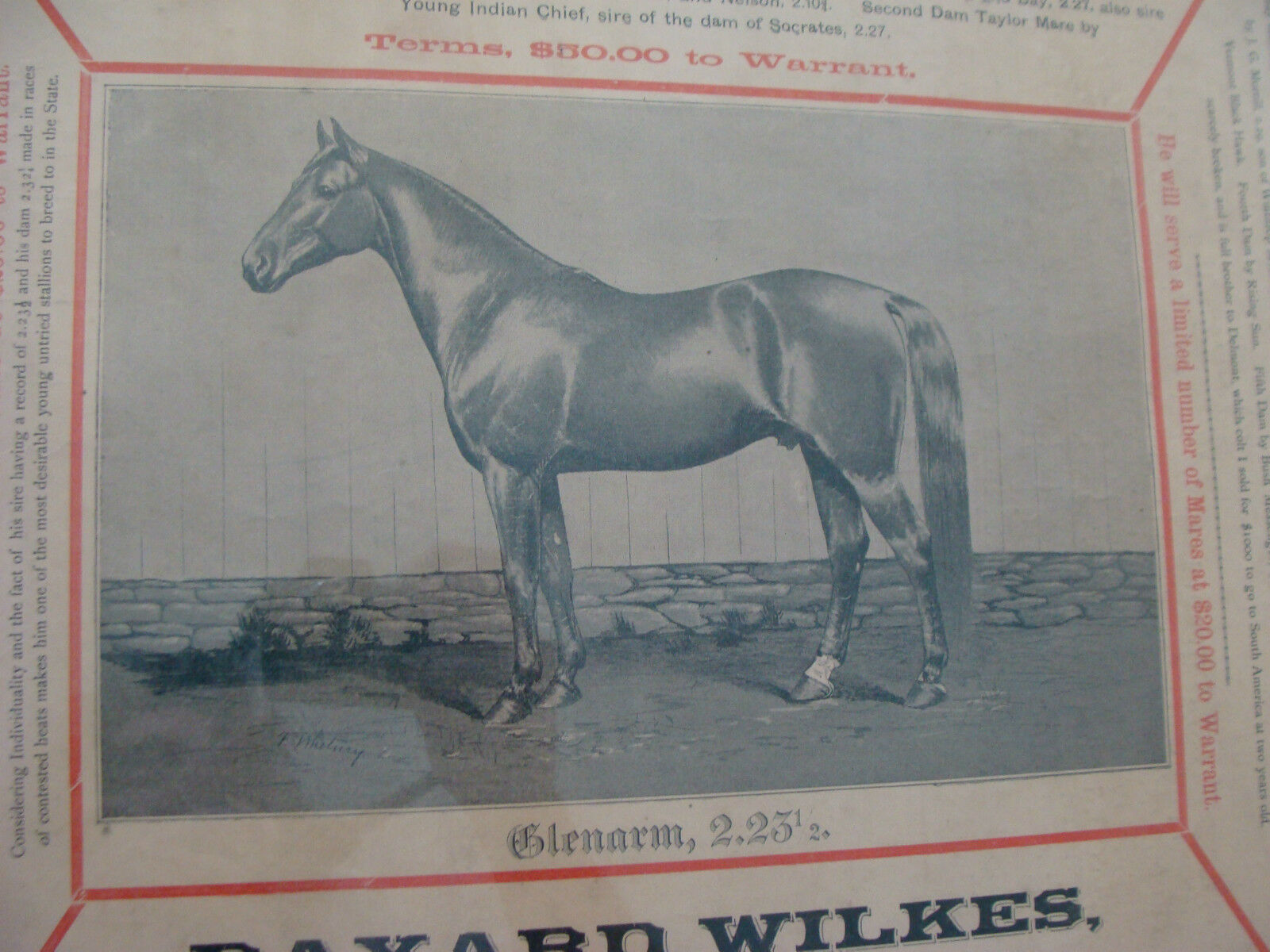 Poster  1892 Original GLENARM HORSE POSTER C.P. Drake Lesiston Maine double side