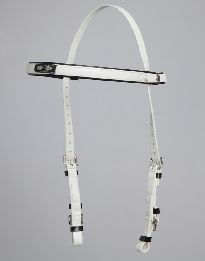 Brand New Zilco SS Endurance Bridle (Halter and  Headstall) 2 Part Bridle  most preferential