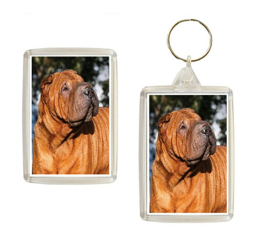 Shar Pei Dog Keyring or Fridge Magnet Novelty Gifts