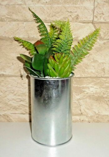 Home Dcor Art Flower Art Plant dekopflanze Cactus kaktee ...