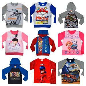 Official-Character-Boys-Girls-Kids-Child-Jumper-Sweater-Hoodie-Top-2-8-Years