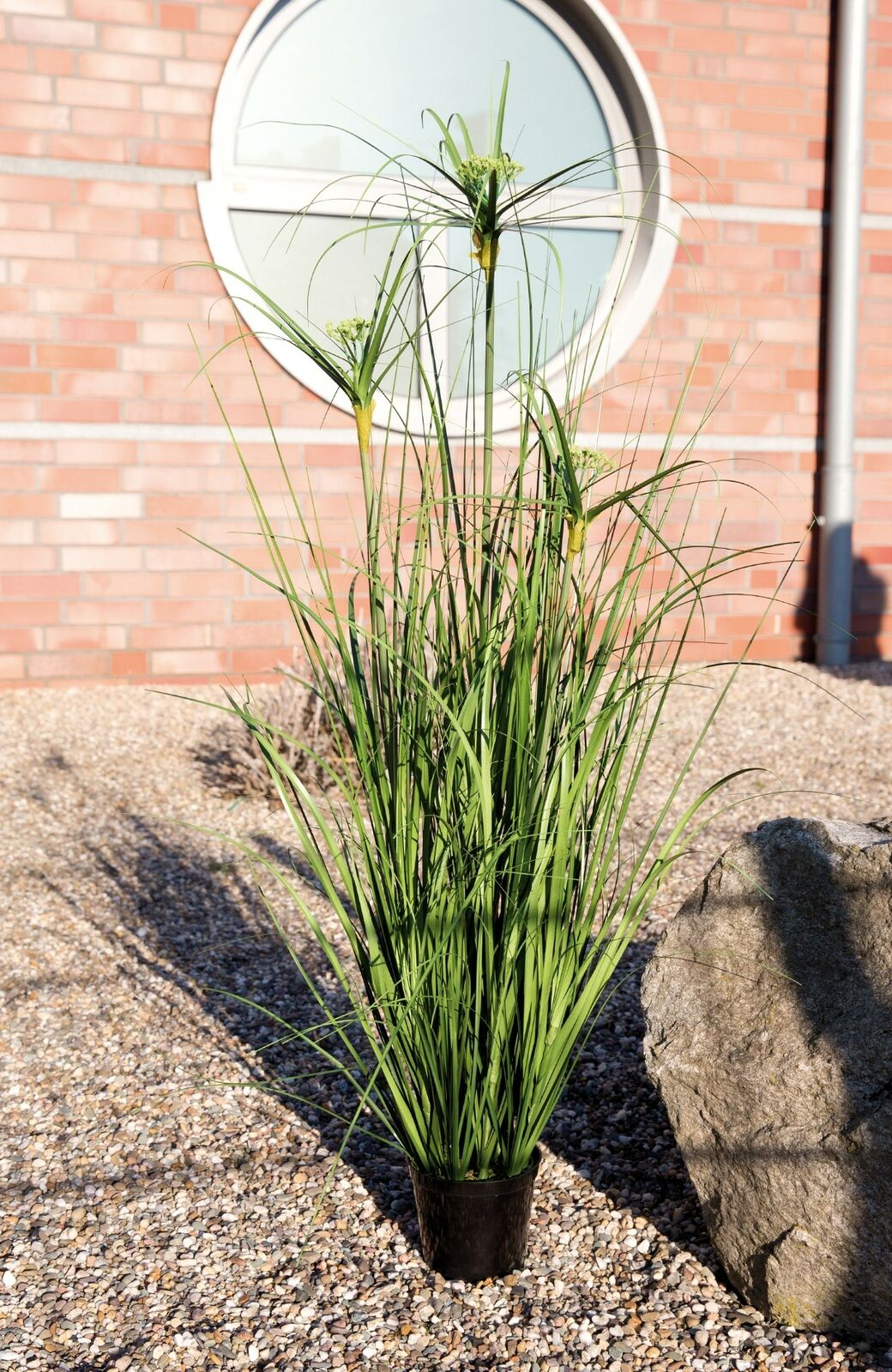 Deko Gras Kunststoffgras Plastikgras stehend  im Topf Cyperus grün, 101,5 cm