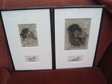 Pair of Gun dog Pastels.James Winchester Frazer 1873-1930 .