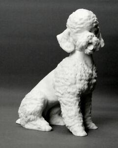 Porzellanfigur-034-Pudel-034-Alboth-amp-Kaiser-Biskuitporzellan-18-0-cm