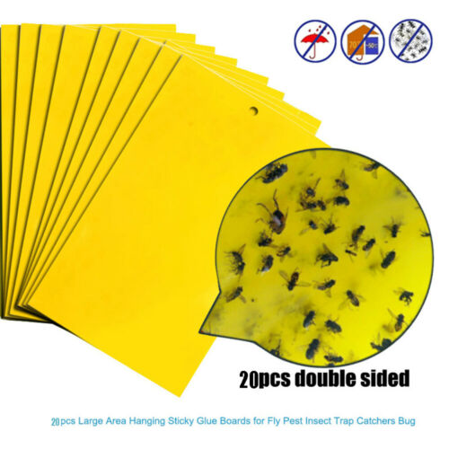 20Pcs Strong Flies Traps Bugs Sticky Board Catching Aphid Insects Pest Killer
