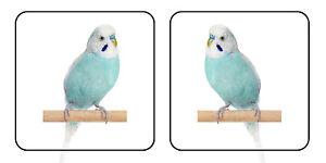 20 Bleu Perruche Oiseau Autocollants Pour Vitrines 50 Mm X 50 Mm (10 Gauche Et 10 Droit)-afficher Le Titre D'origine Assurer IndéFiniment Une Apparence Nouvelle