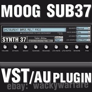 Details about Moog Sub 37 VST AU Synth Plugin Analog Synthesizer Sounds  Library Instrument DVD