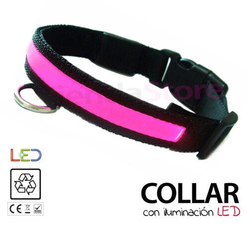 Collar perros y mascotas luminoso iluminación LED TODAS LAS TALLAS alta calidad