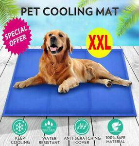 XX-LARGE-SELF-COOLING-COOL-GEL-MAT-PET-DOG-CAT-HEAT-RELIEF-NON-TOXIC-SUMMER-XXL