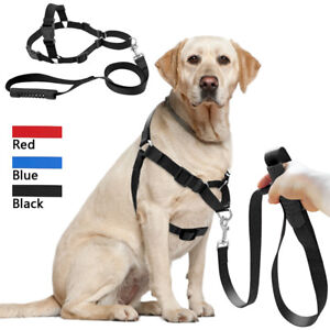 No Pull Dog Harness and Leash No Choke Nylon Front Leading for Large