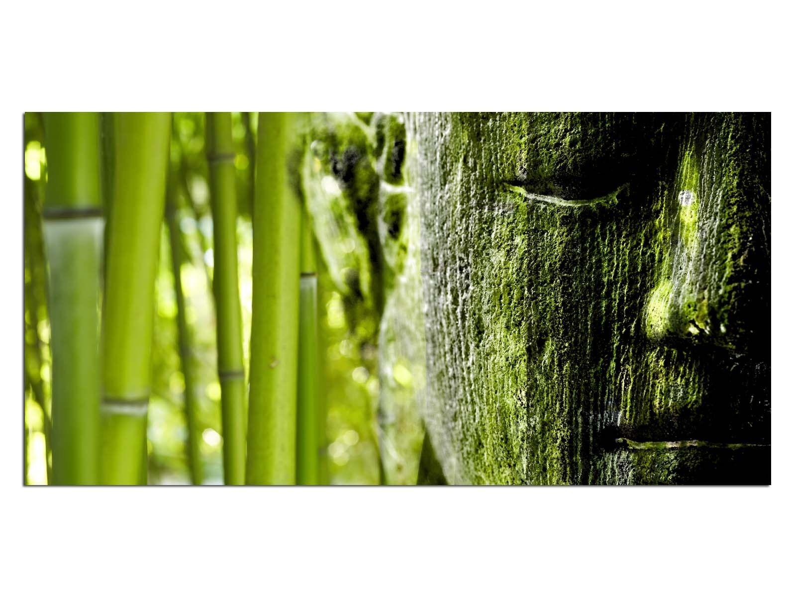 Deco De Vidrio Imagen eg4100500641 Bambú Buddah verde Tamaño 39,37  X 19,68  Hd prin
