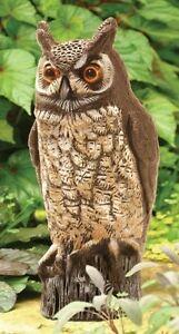 Garden Owl Statue Pest Control Bird Poop Scare Birds Rodents
