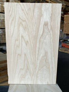 Swamp-Ash-2-Pc-Beautiful-Color-Open-grain-KD-22-X-14-x-1-78-Guitar-Blank