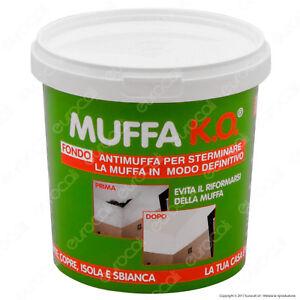 Muffa-KO-Tecnostuk-Antimuffa-Fondo-Sbiancante-Coprente-e-Igienizzante-1-LITRO