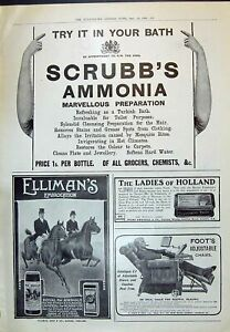 Old-Print-1910-Scrubb-039-S-Ammonia-Ellimans-Jules-Denoual-Toothpaste-Foot-039-S-20th