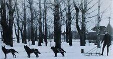 Old picture of dog team sled in, or near Tetonia Teton County Idaho