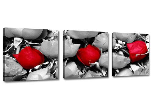 Bilder WANDBILDER auf Rahmen gespannt Marke Visario 150X50 DREITEILIG 1575 D2