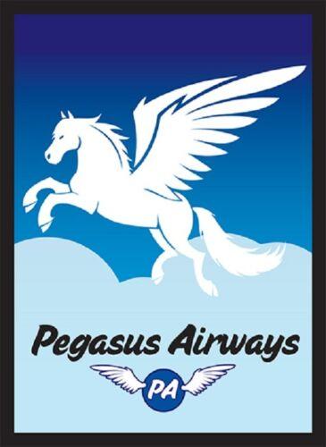 PEGASUS AIRWAYS 100 Sleeves Legion Supplies for MTG Magic the Gathering POKEMON