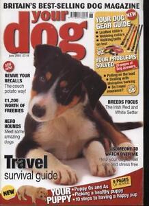 YOUR-DOG-MAGAZINE-June-2005