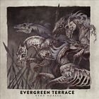 Dead Horses by Evergreen Terrace (CD, Nov-2013, Rise Records)