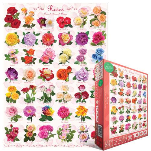 ROSE 1000 PUZZLE PEZZI PUZZLE 1000 EG60000593 - EUROGRAPHICS 8c23ab