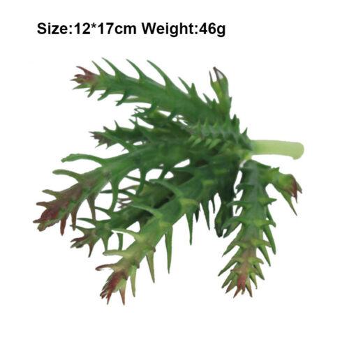 Artificial Succulent Flower Floral Stem Plastic Fake Plant Foliage Garden Decor