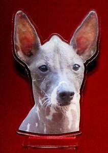 statuette-photosculptee-10x15-cm-chien-mexicain-1-dog-hund-perro-cane