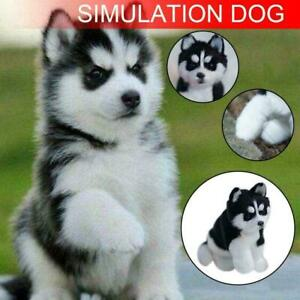 Realistic-Husky-Dog-Simulation-Toys-Dog-Puppy-Lifelike-2020-Toys-Stuffed-U7L7