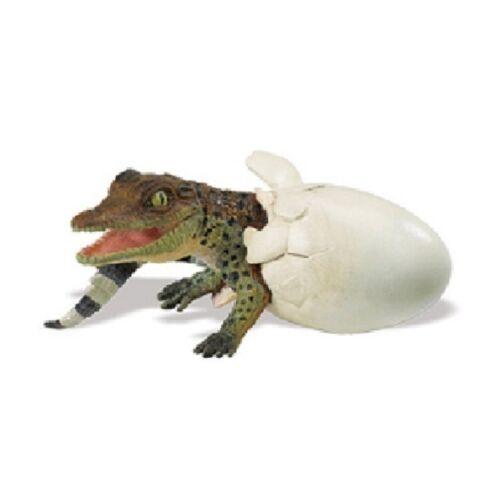 Eclosión krokodilbaby 11 cm serie animales acuáticos Safari Ltd 269229