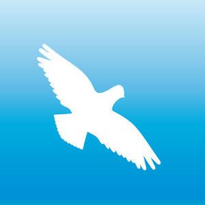 Autocollants-8cm-Blanc-Faucon-Oiseau-Peur-Fenetre-Protection-Deco-Film