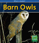 Barn Owls by Patricia Whitehouse (Paperback, 2009)