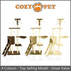 Cat-Tree-by-Cozy-Pet-Top-Selling-Model-of-Cat-Trees-Cat-Scratcher-Kitten