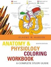 Anatomy And Physiology Coloring Workbook by Elaine N Marieb