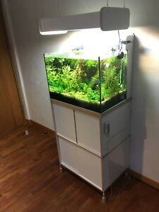 Verantwortlich Aquarium Komplett Mit Unterschrank Und Hängeleuchte Diversifizierte Neueste Designs Haustierbedarf