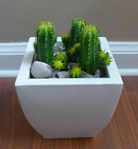 Image Is Loading 12 Artificial Mini Columnar Cactus Plants Gr Home