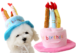 Pet-Girl-Boy-Dog-Cat-Pink-or-Blue-Birthday-Party-Hat-Fancy-Dress-Costume-Outfit