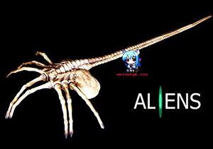 Alien Face Hugger with Nails 1//1 Figure Vinyl Model Kit