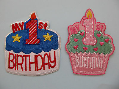 Phenomenal My 1St Birthday Cake Iron On Applique Different Styles Ebay Funny Birthday Cards Online Eattedamsfinfo
