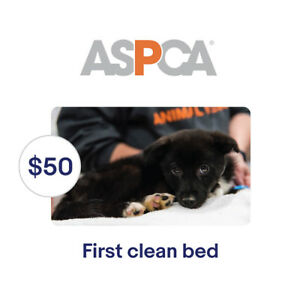 ASPCA-50-Their-First-Clean-Bed-Symbolic-Charitable-Donation