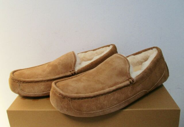 d86b34c4516 UGG Australia Men s ASCOT Slippers Shoes 10US CHESTNUT Brn Suede NWB  110  MSRP