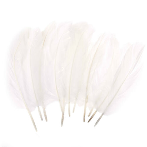 20cm Natural Bright Arts /& Crafts White Dreamcatcher Feathers 10 Pack