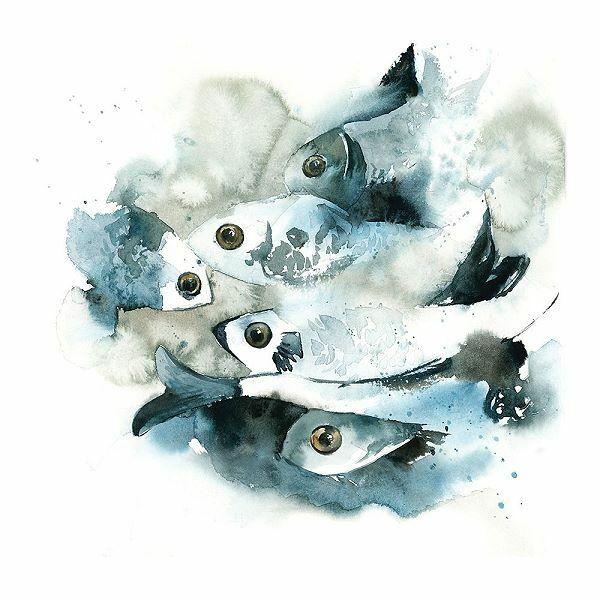 Sophia Rodionov  Fish Keilrahmen-Bild Leinwand Aquarell Fische