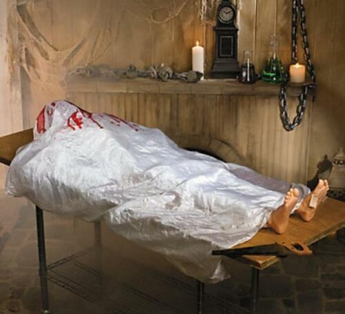 Halloween Haunted House Party John Doe Prop w/ Sound Activated Motion 5ft